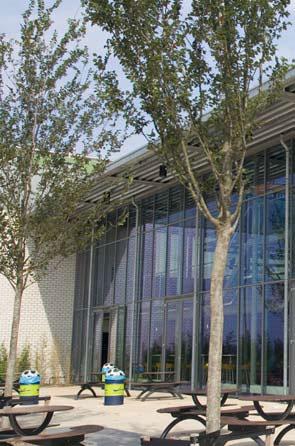Ooms - TU Delft Sportcomplex